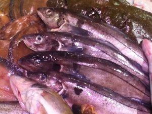 fish in stockholm market 2102